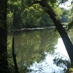 Greenway Trail Murfreesboro Greenway-04