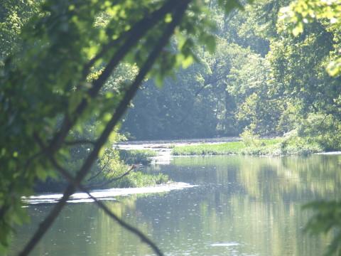 Stones River on Greenway Trail Murfreesboro Greenway-01
