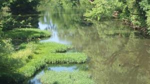 Stones River Murfreesboro Greenway-05