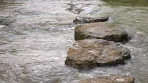 Stepping Stones Greenway Murfreesboro