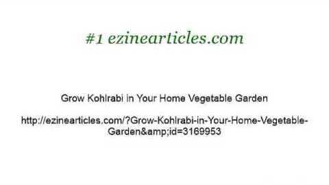Kohlrabi How To Grow