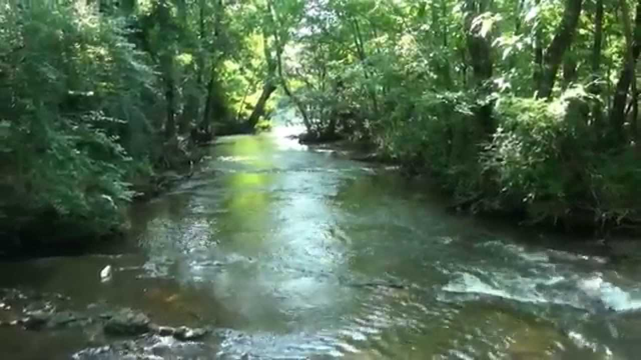 Stones River Greenway Stepping Stones Video